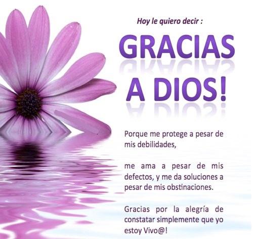 agradecimiento al creador