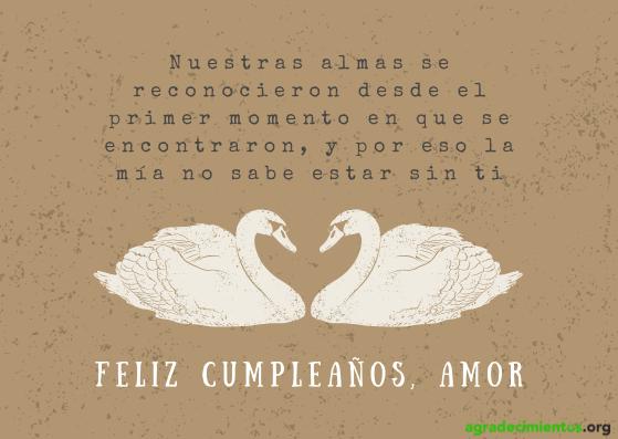 Feliz cumpleaños amor con imagen de dos cisnes