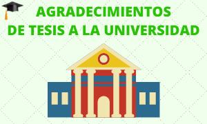 Agradecimientos de tesis a la Universidad
